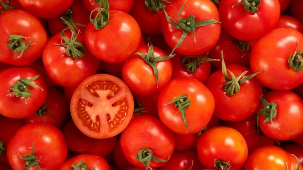 adivinhas-folcloricas-tomate