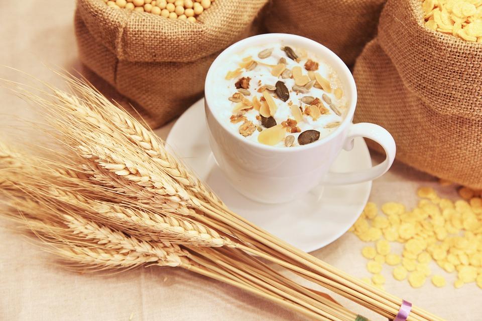 alimentos-aumentar-leite-materno-aveia