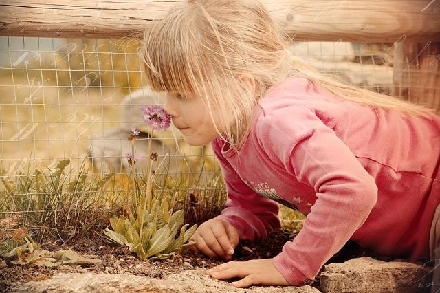 brincadeiras e atividades criancas autistas