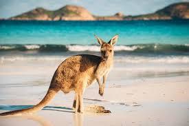 au-pair-australia