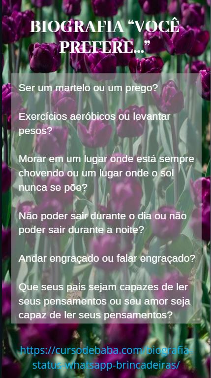https://cursodebaba.com/images/biografia-brincadeiras-status-whatsapp14.png