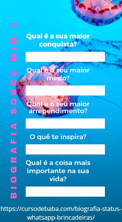 https://cursodebaba.com/images/biografia-brincadeiras-status-whatsapp2.png