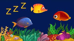 brincadeiras-cantadas-peixinho