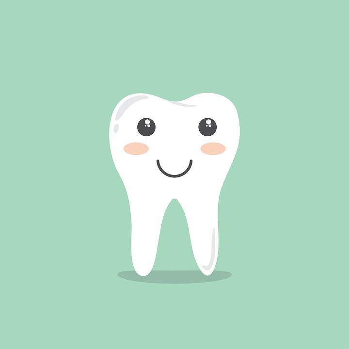 dentes-de-leite-quantos