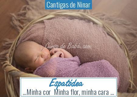 Cantigas de Ninar - Espatódea