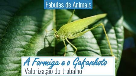 Fábulas de Animais - A Formiga e o Gafanhoto