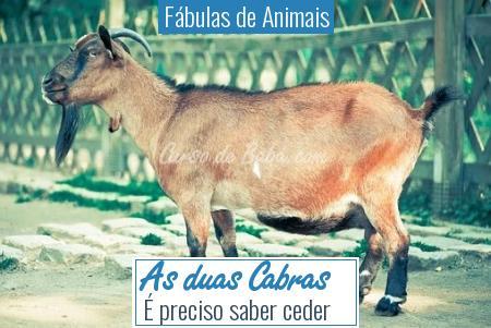 Fábulas de Animais - As duas Cabras