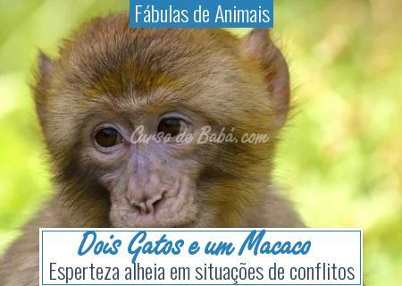 Fábulas de Animais - Dois Gatos e um Macaco