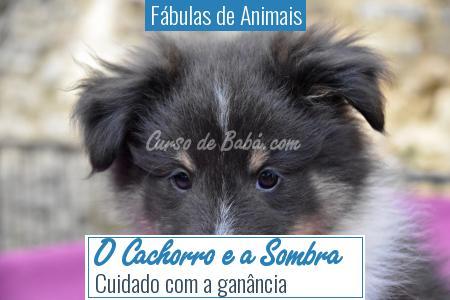 Fábulas de Animais - O Cachorro e a Sombra