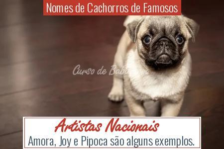 Nomes de Cachorros de Famosos - Artistas Nacionais