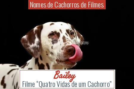 Nomes de Cachorros de Filmes - Bailey