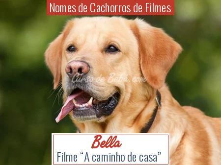Nomes de Cachorros de Filmes - Bella