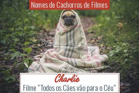 Nomes de Cachorros de Filmes - Charlie