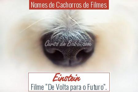 Nomes de Cachorros de Filmes - Einstein