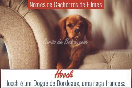 Nomes de Cachorros de Filmes - Hooch