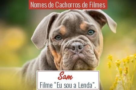 Nomes de Cachorros de Filmes - Sam