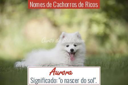 Nomes de Cachorros de Ricos - Aurora