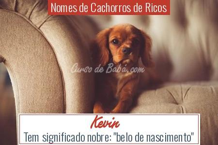 Nomes de Cachorros de Ricos - Kevin
