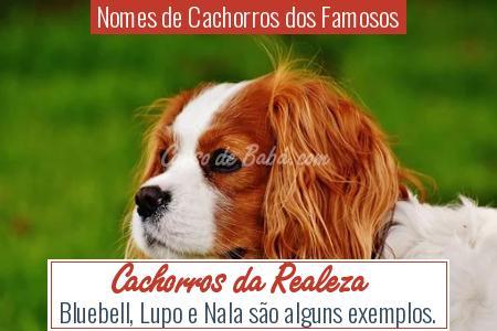 Nomes de Cachorros dos Famosos - Cachorros da Realeza