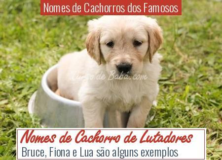 Nomes de Cachorros dos Famosos - Nomes de Cachorro de Lutadores