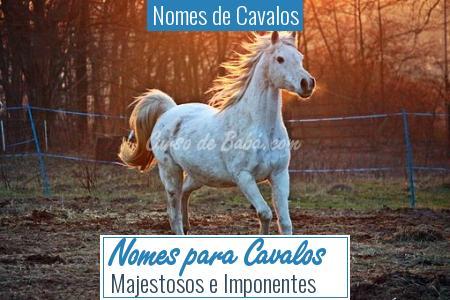 Nomes de Cavalos - Nomes para Cavalos