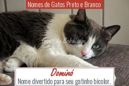 Nomes de Gatos Preto e Branco - Dominó