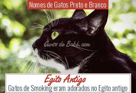 Nomes de Gatos Preto e Branco - Egito Antigo