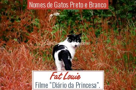 Nomes de Gatos Preto e Branco - Fat Louie