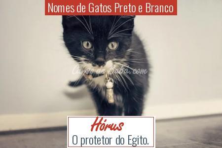 Nomes de Gatos Preto e Branco - Hórus