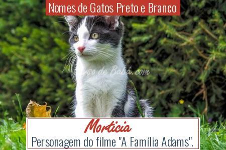 Nomes de Gatos Preto e Branco - Morticia