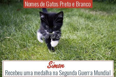 Nomes de Gatos Preto e Branco - Simon