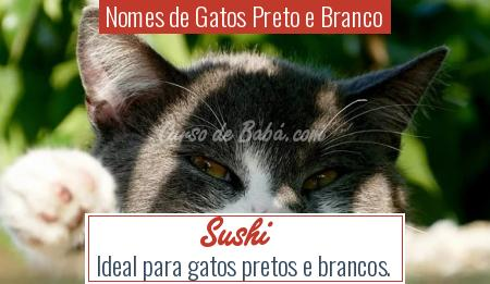 Nomes de Gatos Preto e Branco - Sushi