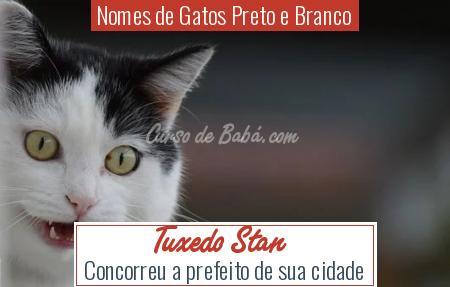 Nomes de Gatos Preto e Branco - Tuxedo Stan
