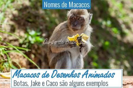 Nomes de Macacos - Macacos de Desenhos Animados