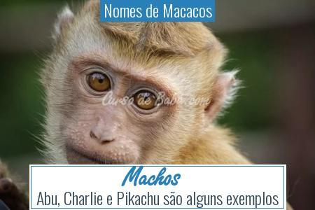 Nomes de Macacos - Machos