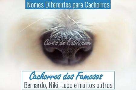 Nomes Diferentes para Cachorros -  <a  data-cke-saved-href='https://cursodebaba.comhttp://www.cursodebaba.com/nome-cachorro-de-famosos/' href='https://cursodebaba.comhttp://www.cursodebaba.com/nome-cachorro-de-famosos/' style='color:#e67e22'>Cachorros dos Famosos</a>
