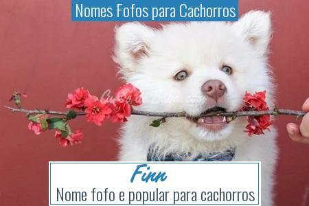 Nomes Fofos para Cachorros - Finn