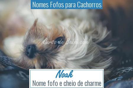Nomes Fofos para Cachorros - Noah