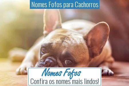 Nomes Fofos para Cachorros - Nomes Fofos