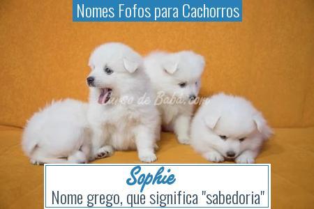 Nomes Fofos para Cachorros - Sophie