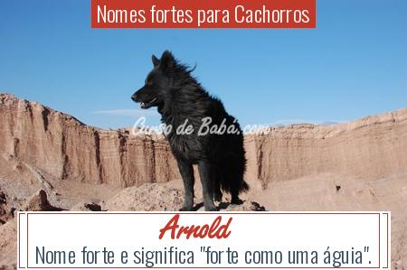 Nomes fortes para Cachorros - Arnold
