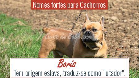 Nomes fortes para Cachorros - Boris