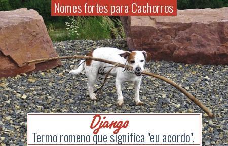 Nomes fortes para Cachorros - Django