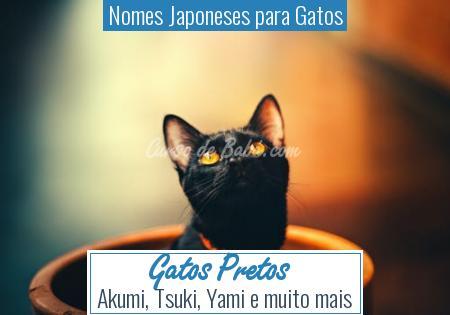 Nomes Japoneses para Gatos - Gatos Pretos