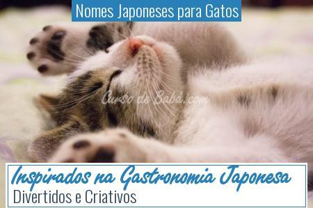 Nomes Japoneses para Gatos - Inspirados na Gastronomia Japonesa