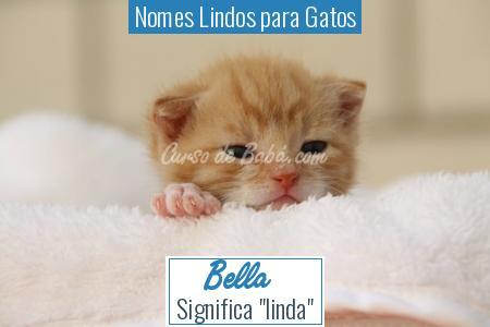 Nomes Lindos para Gatos - Bella
