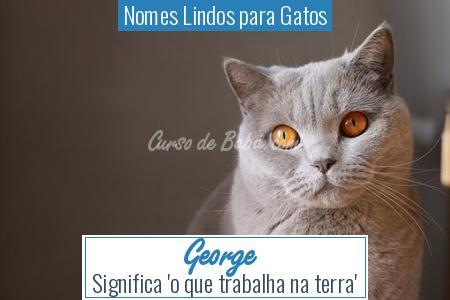 Nomes Lindos para Gatos - George