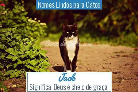 Nomes Lindos para Gatos - Jack