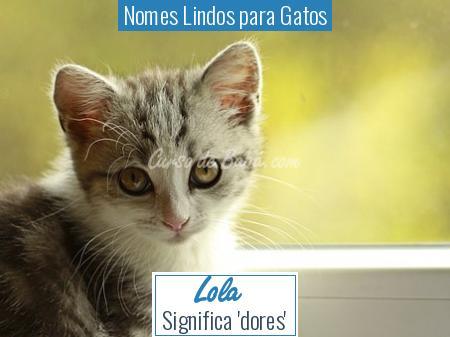 Nomes Lindos para Gatos - Lola