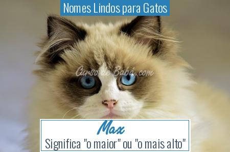Nomes Lindos para Gatos - Max